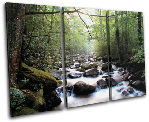 Forest Stream ECO Landscapes - 13-0757(00B)-TR32-LO